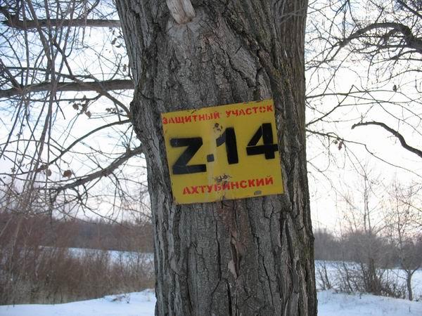 №13 (13 января 09)