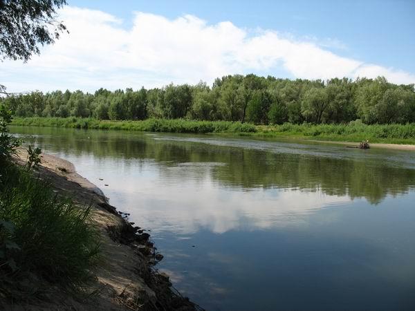 Река вырвавшись из узкости разливается вширь