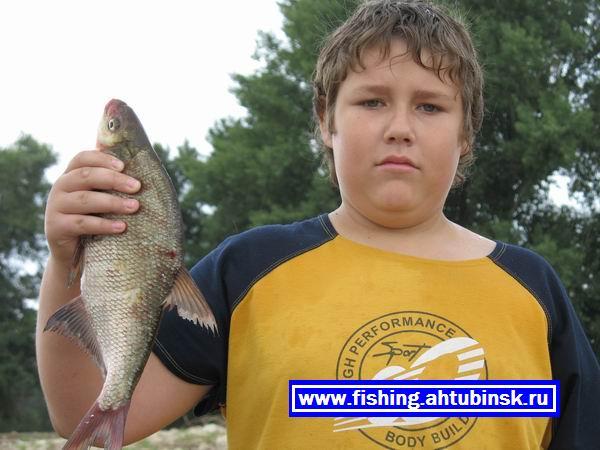 Like fisher 2