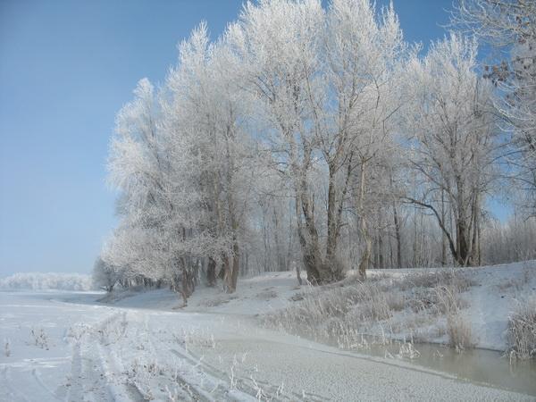 Ахтубинская зима 2009